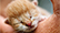 kitten30